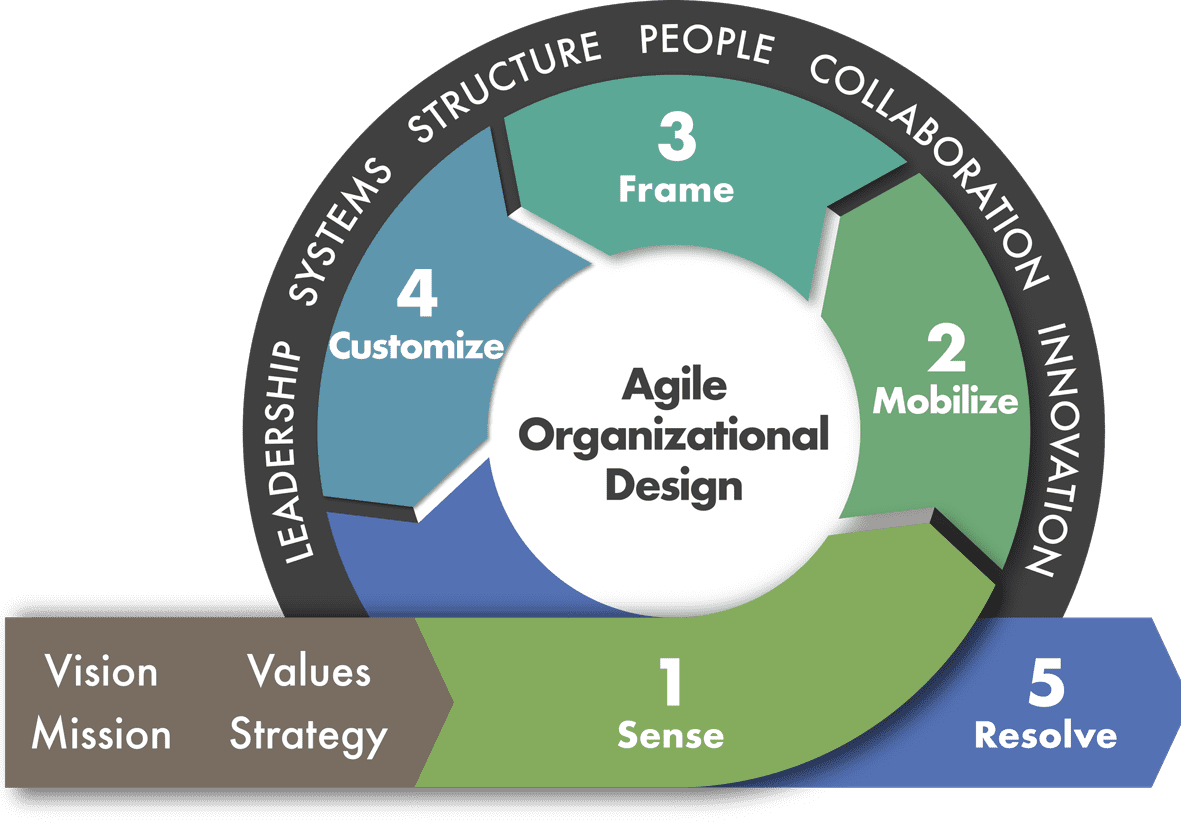 Agile Organizational Design