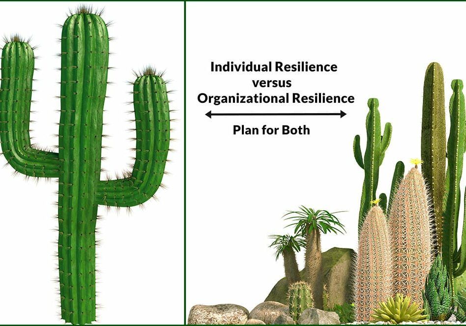 Planning-for-Resilience